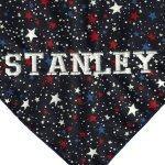 American Flag Stars Dog Bandana