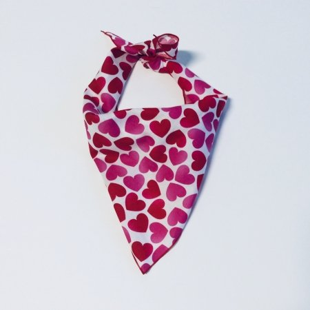 Valentine's Day Heart Dog Bandana