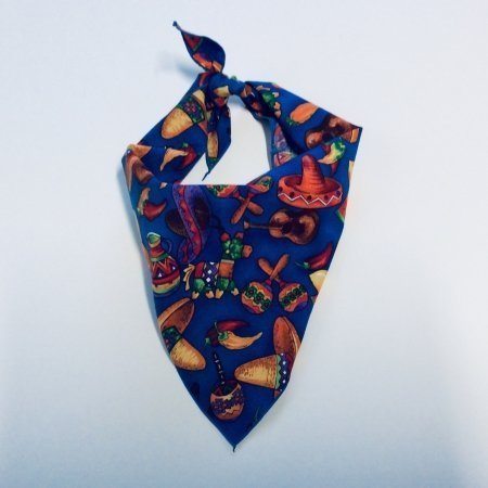 Fiesta Party Dog Bandana
