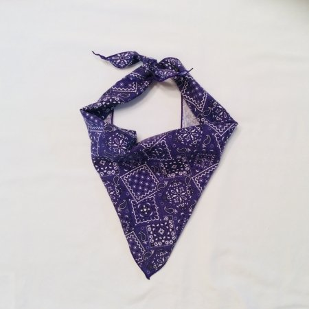 Purple Blazin Dog Bandana